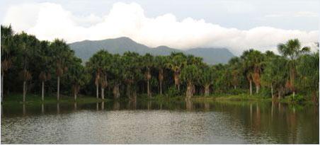 Лагуна в джунглях,Перу